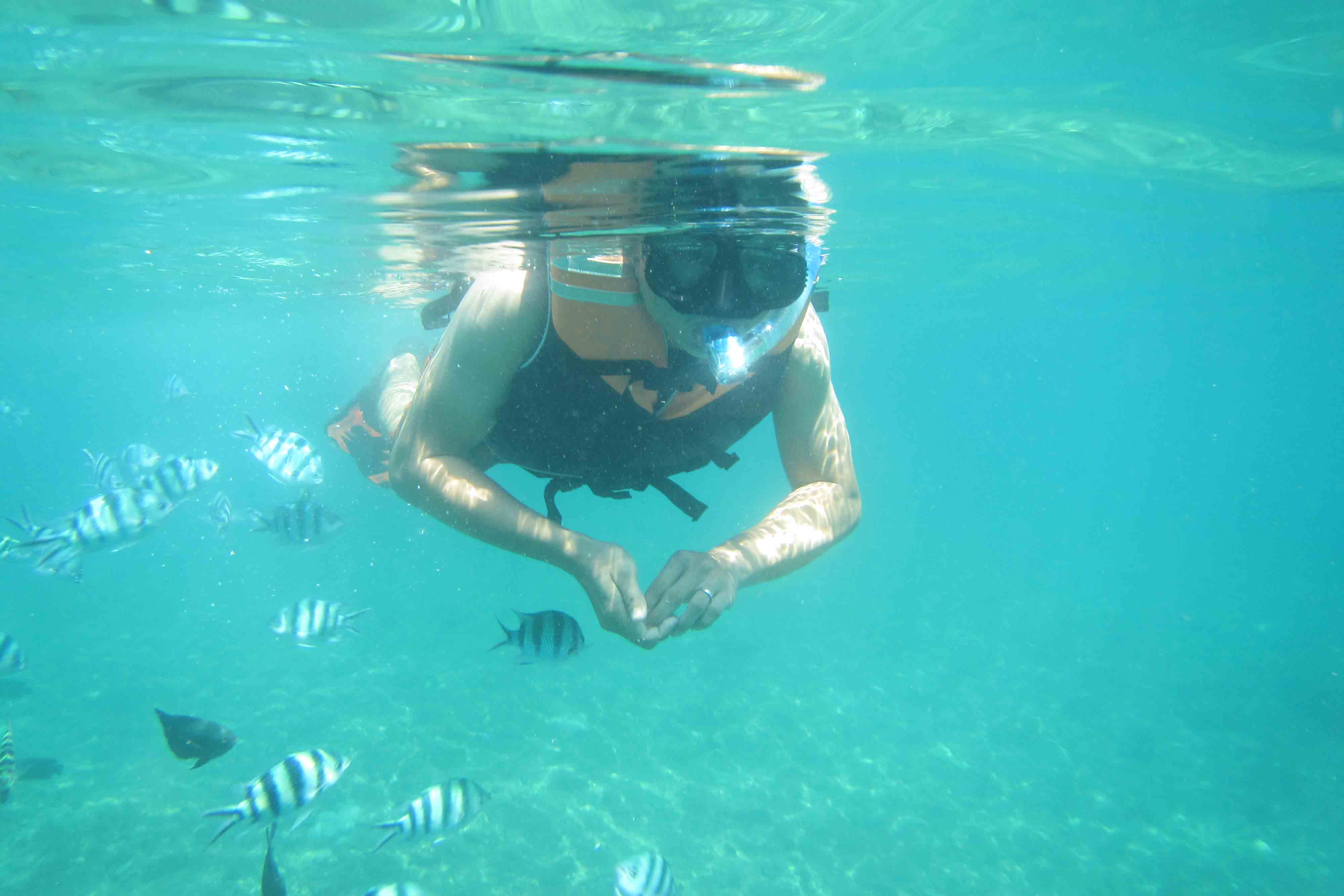 BOOK ONE DAY BEFORE!!!Min - 2 pak - (60 Minutes)SnorkelingSnorkeling (British spelling: snorkelling) is the practice of swimming on or through a body of water while equipped with a diving mask,