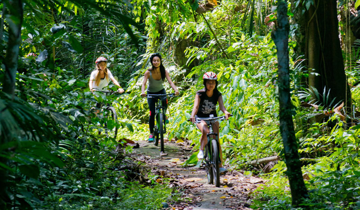 BOOK ONE DAY BEFORE!!!Package Includes :CyclingGet ready to embark on a journey off the beaten track, through some of Bali's most scenic highland locales. Start your ride near the renowned
