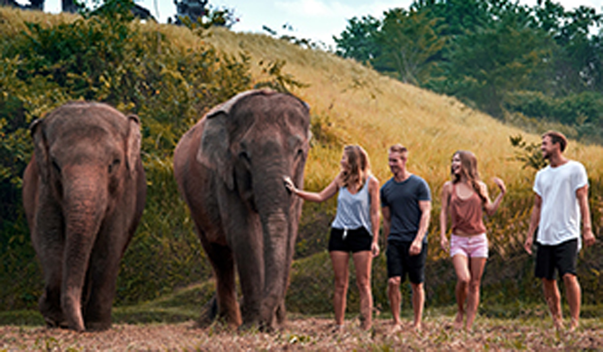 BOOK ONE DAY BEFORE!!!  About Bal Zo  The Bal Zo opened in 2002 as the island's first and only Balinese-owned zoo logical park, which still holds true today. We are situated on 22 acres of
