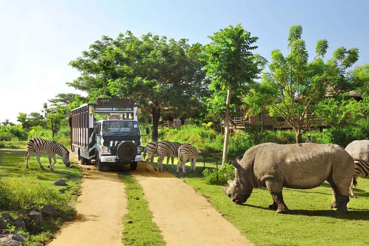 BOOK ONE DAY BEFORE !!!Price: USD 70 / car / private tour / Max 5 Pax  Pick up Time @ Ubud: 9.00 am  Approximate length of this tour is 8 hours. Includes car, driver, and petrol.  Package Incl