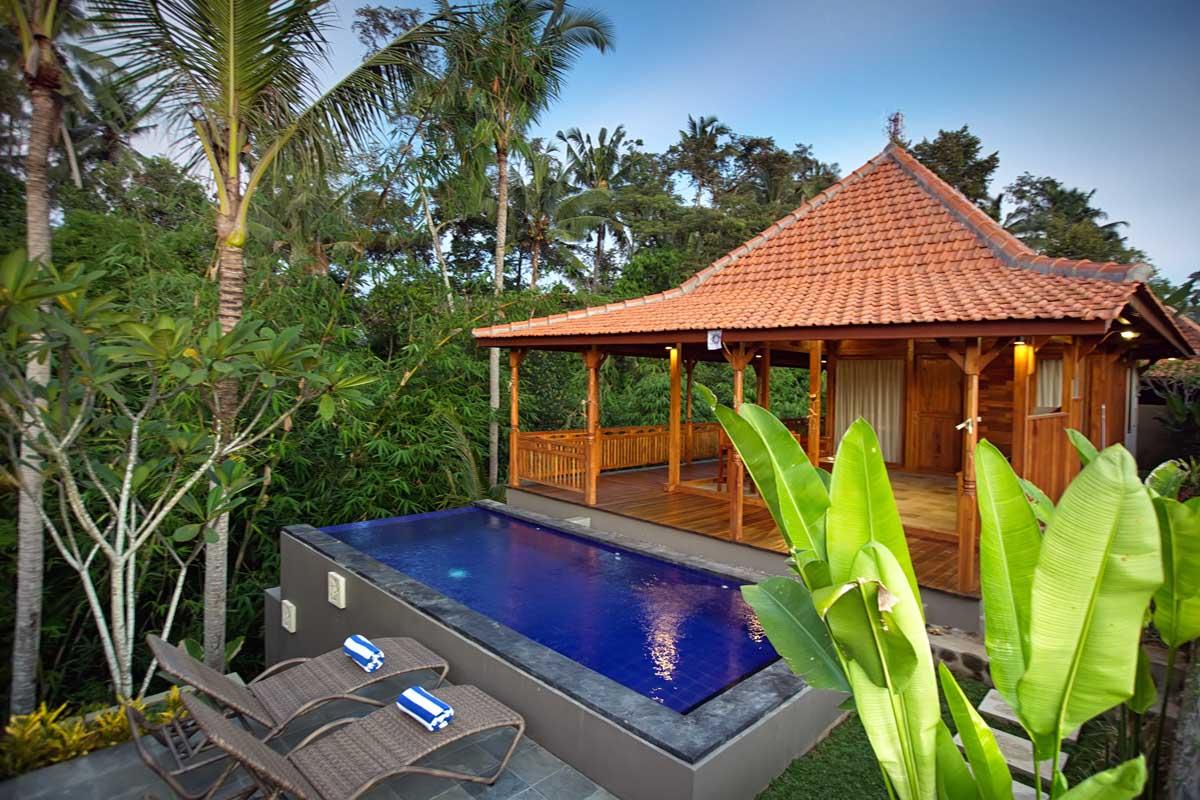 Ubud Heaven Villa Bali Sayan