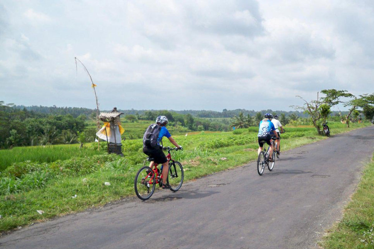 BOOK ONE DAY BEFORE !!!Min - 2 PaxPick Up (Ubud,Kuta,Sanur,Nusa Dua Area) Cycling Tours  Bali Extr Cycling Tours was established in August 2008. This unforgettable cycling tour is great challen