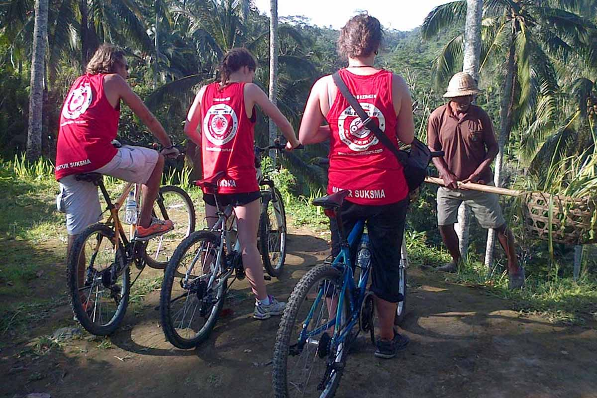 A fascinating downhill cycling tour from Mount Batur (Kintamani Village) and through the quiet, back roads of Bali's beautiful countryside. You will be able to visit a woodcarving workshop; temples,