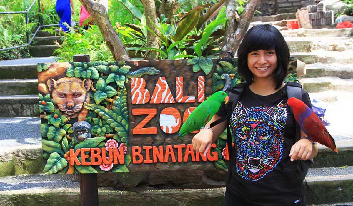BOOK ONE DAY BEFORE!!!About Bal ZoThe Bal Zo opened in 2002 as the island's first and only Balinese-owned zoological park, which still holds true today.  We are situated on 22 acres of lush