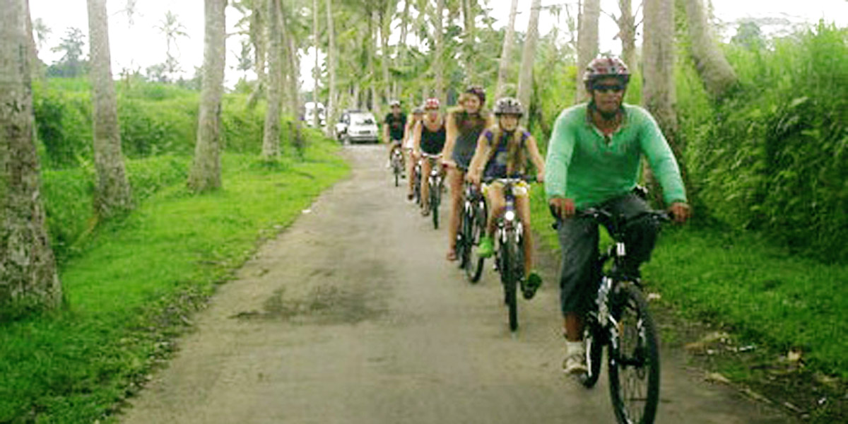 From the stunning views of Mt. Batur volcano, cycle back to artistic Ubud - experience rural Bali, the daily village life of the farmers and craftspeople. This all-ages ride takes you into forests,