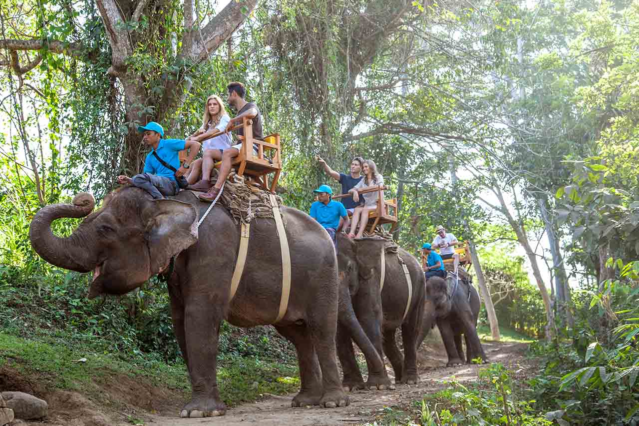 BOOK ONE DAY BEFORE!!!About Bal ZoThe Bal Zo opened in 2002 as the island's first and only Balinese-owned zoo logical park, which still holds true today.  We are situated on 22 acres of lus