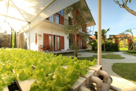 Kubu Tropis Guest House offering a barbecue and terrace with view rice field and organic garde