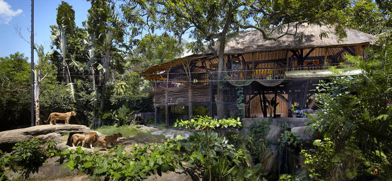 Located centrally in Bali's cultural Gianyar Regency, the Bali Zoo has the distinction of bein