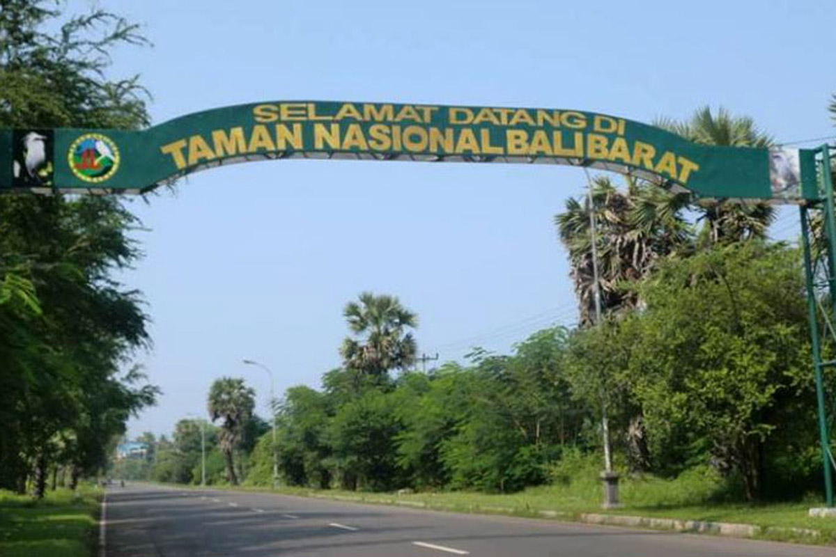 Because of its distance from the more populated southern area of the island, wild northwest Bali i