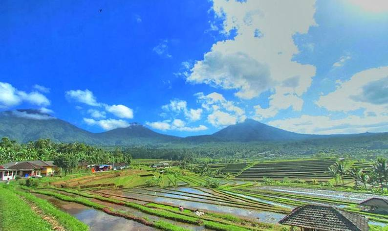 Also located in the Bedugul complex, near Angsri, is Bali's fifth tallest peak, the dormant st